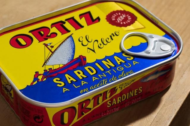 Sardines, close up